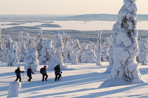 Snowshoe in Finland